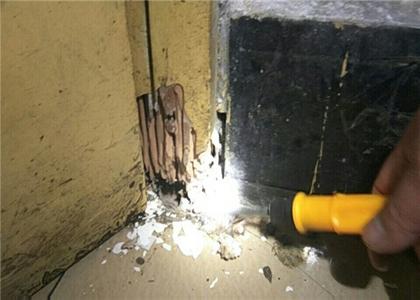 家里有白蚁的原因是什么