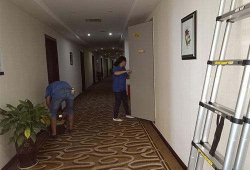 重庆酒店灭鼠治理