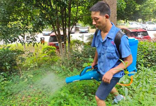 社区蚊虫治理