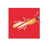 重慶殺蟲公司