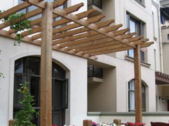阳台葡萄架