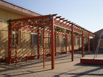 小院葡萄架
