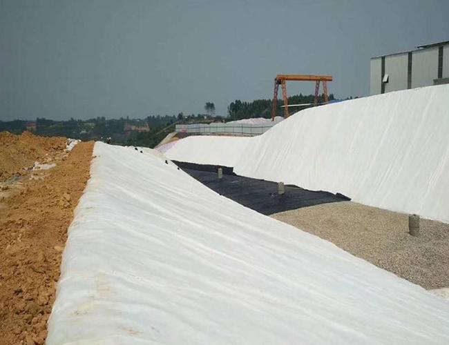 HDPE土工膜的结构型式有光面的和加糙的
