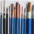 佛山网站推广公司为大家推荐沈阳特种电缆厂家