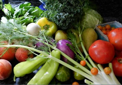 蔬菜净菜配送