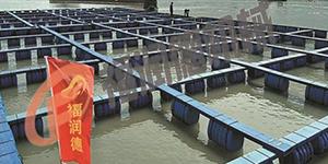 塑胶渔排生产线的相关讲解