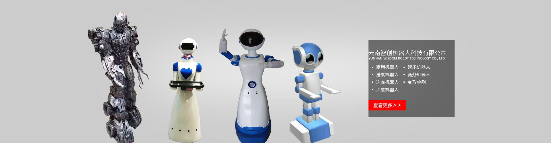 昆明机器人出租