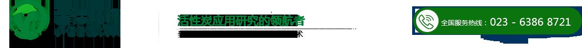 重庆霏洋环保科技股份有限公司
