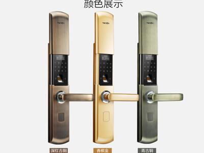 亞太天能 T107型號指紋鎖18