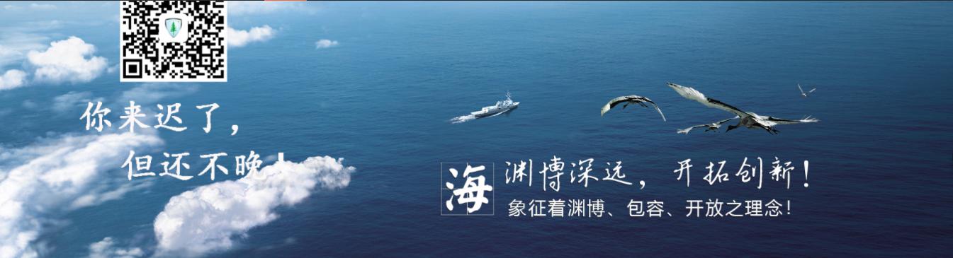 福建喜相逢汽车服务股份有限公司诉边旭军、王新民融资租赁合同纠纷案