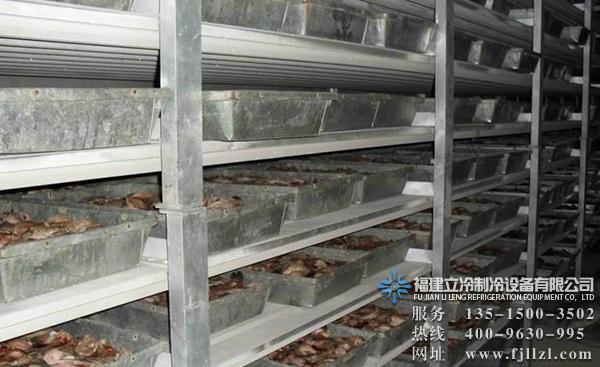 肉类冻品冷库设备