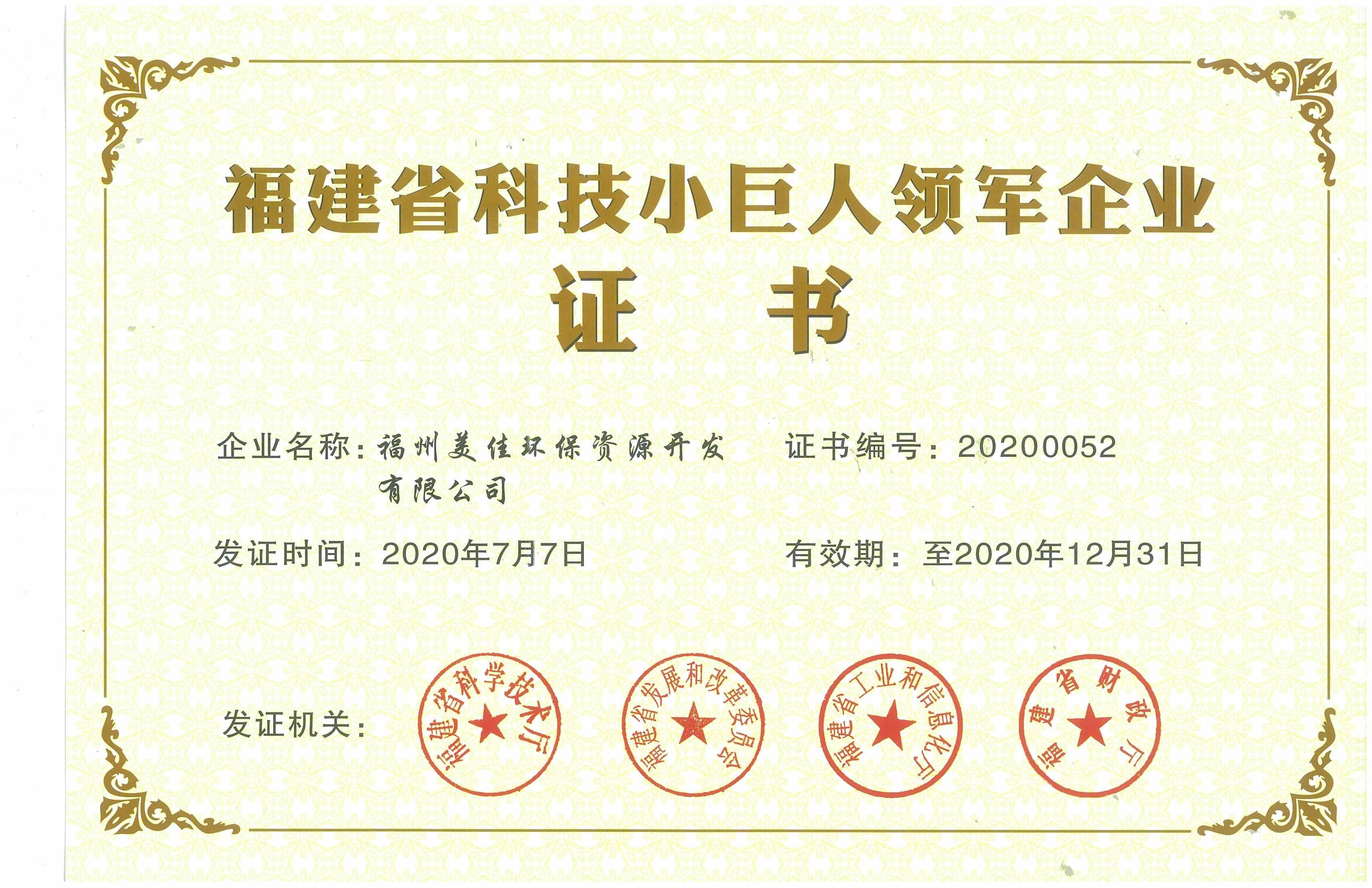 福建省小巨人证书