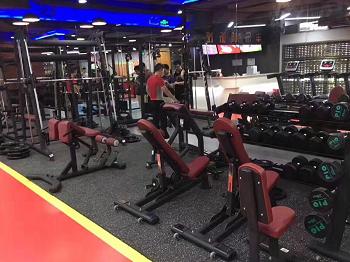 2017健身房器材案例