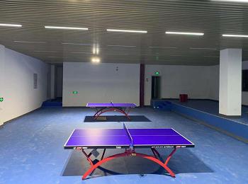 学校乒乓专业运动馆