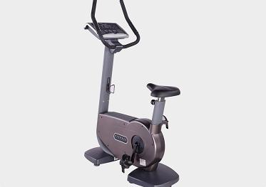 FT-6806E 立式健身车