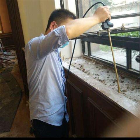 感謝李先生的信任,選擇我們治理白蟻!