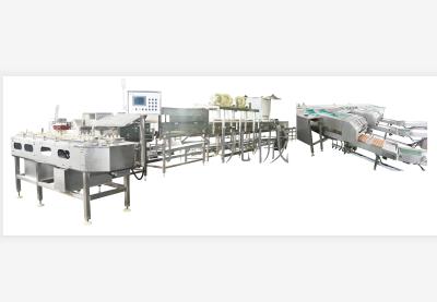 MT-100-2Z蛋品清洗分級裝托機