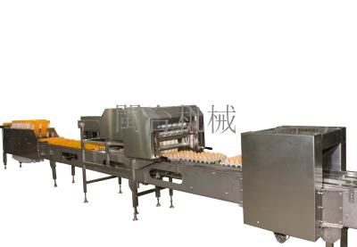 MT-110-2S蛋品装托机