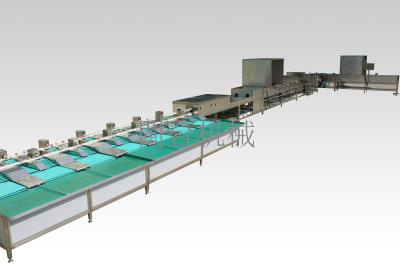 MT-100-2全自動蛋品清洗分級機