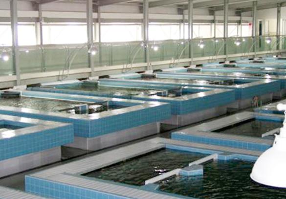 室内水产养殖