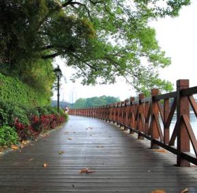 防腐木围栏为庭院增添自然之美