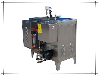 免检电蒸汽发生器