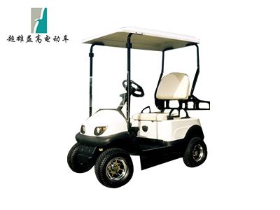 2座电动代步车SK-FL201