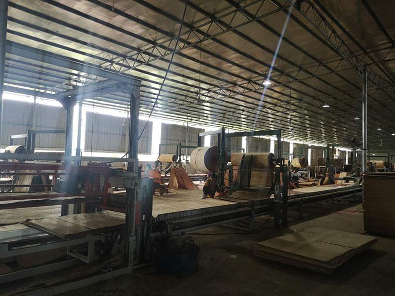 桉木胶合板生产厂家