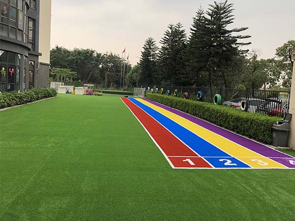 幼儿园彩色草
