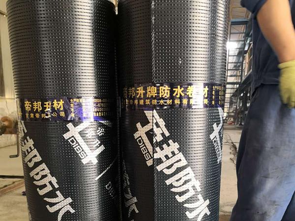 兰州pe高分子防水卷材厂家