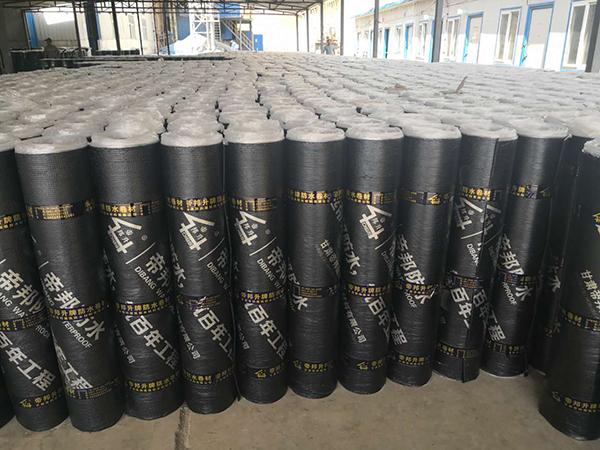兰州高分子丙纶防水卷材厂家