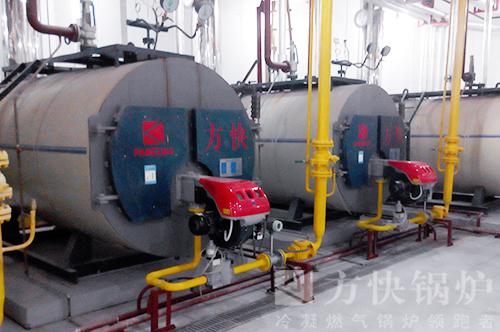 海南美丽之冠酒店燃气热水锅炉案例