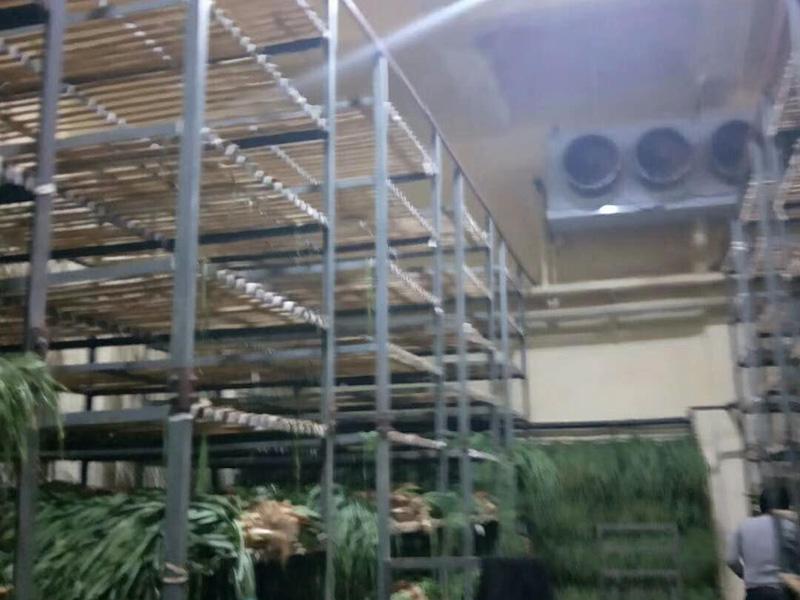 10吨蔬菜保鲜冷库