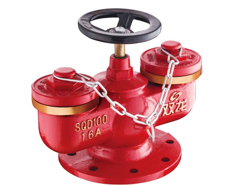 SQD100-1.6A多用式水泵接合器