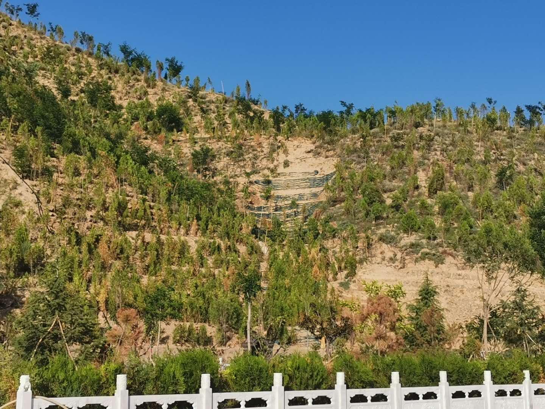 荒山邊坡生態修復與治理