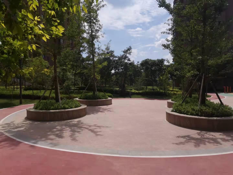 紫云名都小區室外景觀綠化工程