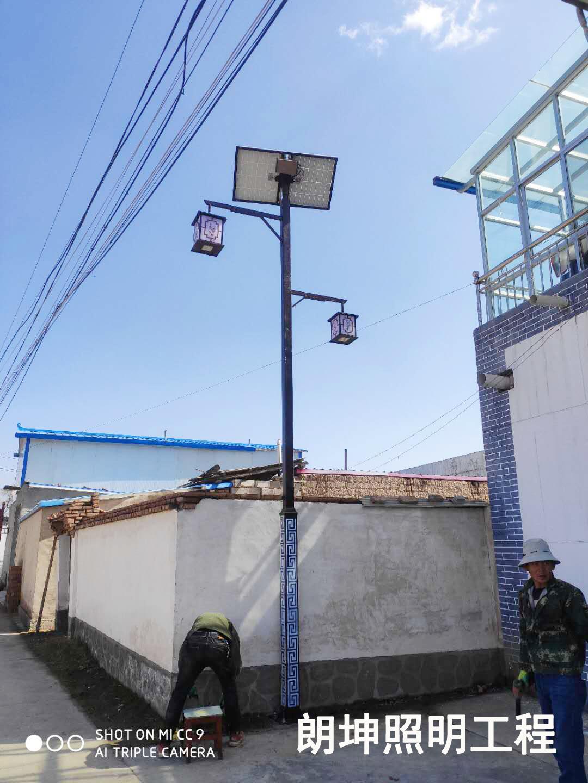 太陽能庭院燈照明工程