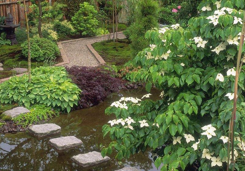 日式私家花园
