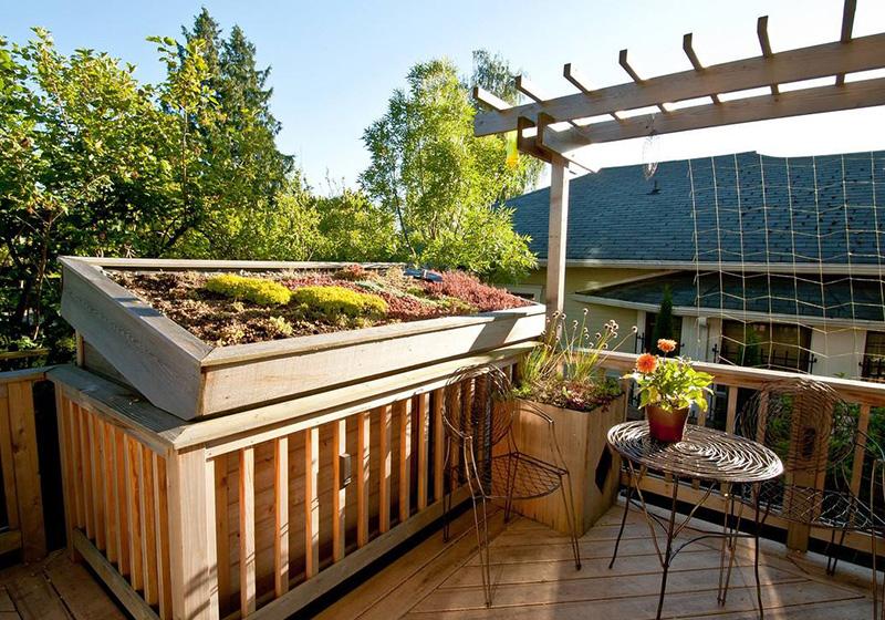 別墅屋頂花園