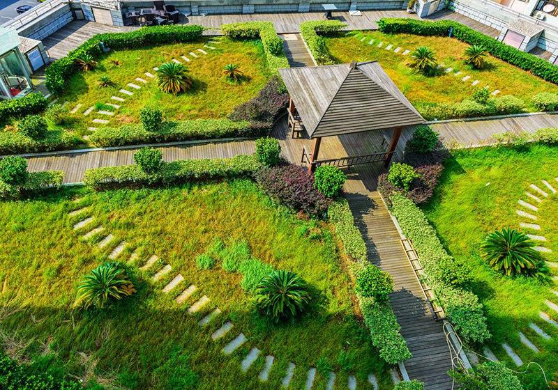 屋頂花園綠化