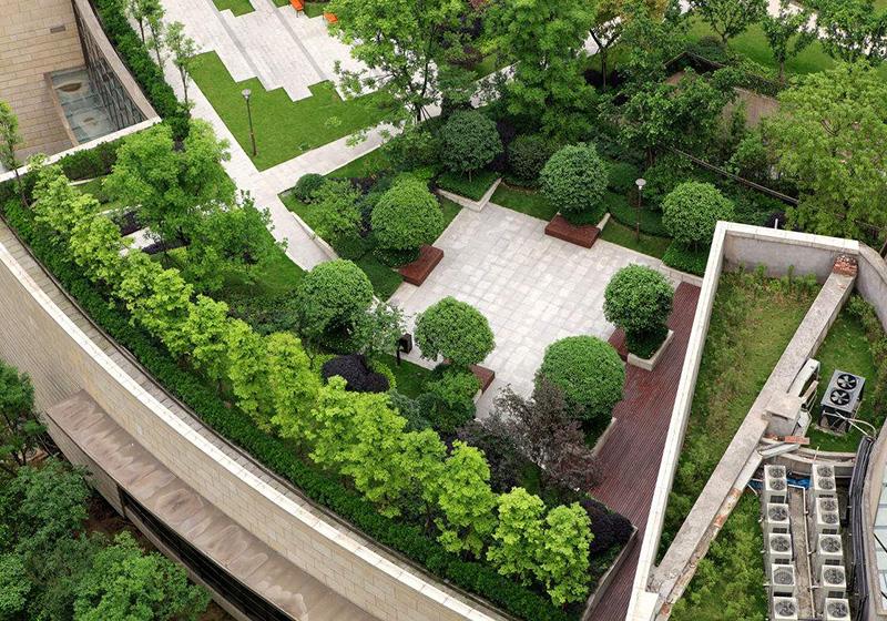 校園屋頂花園