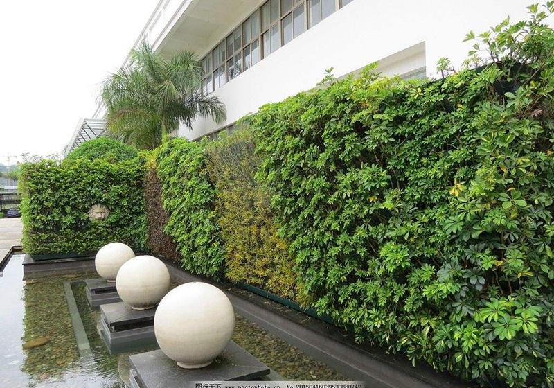 景觀垂直綠化