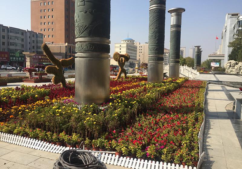 草坪植物雕塑