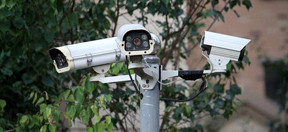 造園過程全程監控