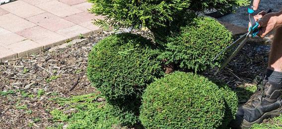沒有隱患的庭院花園施工過程