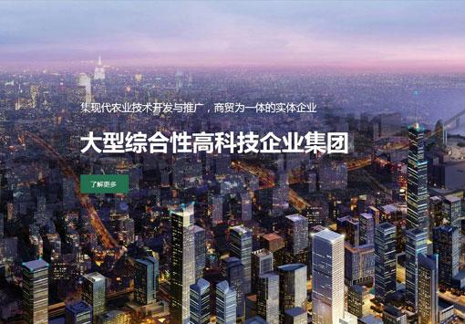 金土地集团网站建设业务