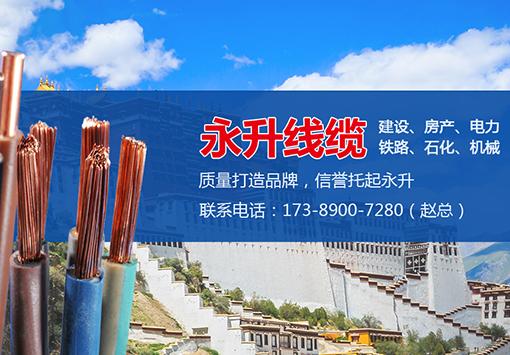 热烈庆祝永升线缆西藏销售部网站上线关键词排名已到首页