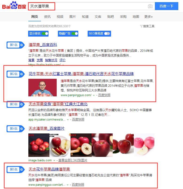 天水花牛苹果潘苹果seo优化效果