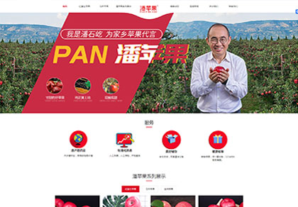 天水花牛苹果潘苹果加入兰州网络推广公司做seo优化