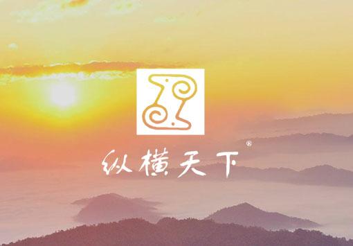 甘肃纵横集团官网yabo21案例展示